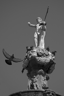 Pigeon and statue, Granada