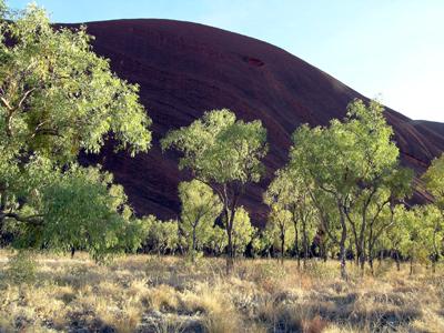Morning light, Uluru